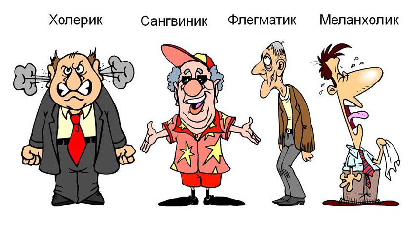 nervnaya_sistema